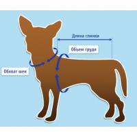Как подобрать размер одежды для собак и котов